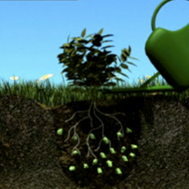 Comment utilise du polyter dans le jardin ?