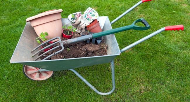 Que faire au potager en avril 1001 jardins - Que faire au jardin en avril ...